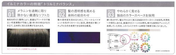 designcolor02